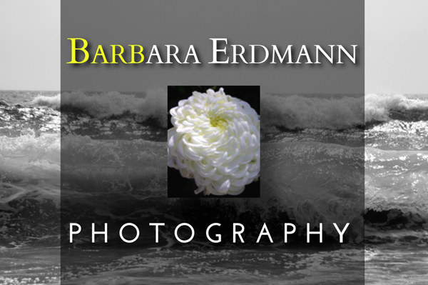 Barbara Erdmann Photography